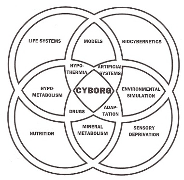 What is a Cyb   Cyb Anthropology