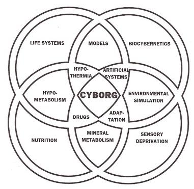 What Is A Cyborg Cyborg Anthropology